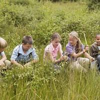 《科瓦奇讲植物》:一本唤醒孩子对大自然和科学的热爱的植物学课堂笔记