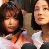 这碗鸡汤道破了日本中产家庭教育的悲凉