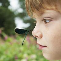 小朋友怕虫子,怎么破?