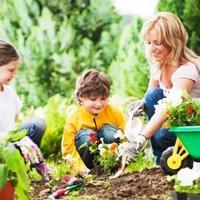 和娃一起进行园艺,会带来神奇的育儿效果!